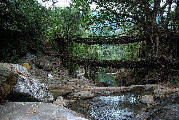 Atlas Obscura - Cherrapunji