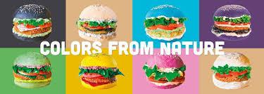 Flower Burger 2