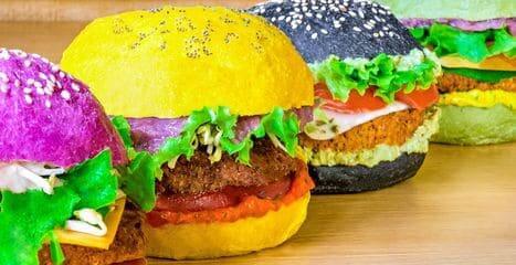 Flower Burger 3